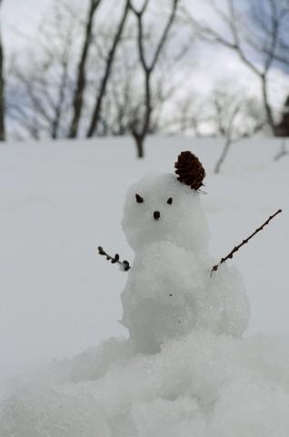 「なぜ人は雪だるまを作るのか」を考えてみた