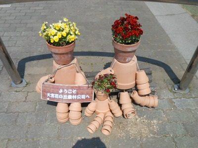【さいたま市】大宮花の丘農林公苑はチューリップ・サルビア・コスモスなどが咲くそうです