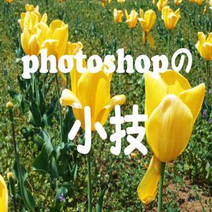 photoshop でぼんやりした写真を、くっきりした写真に加工する方法