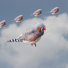 画像編集ソフトGIMPを使用して、切り抜いた画像を重ね合わせる方法