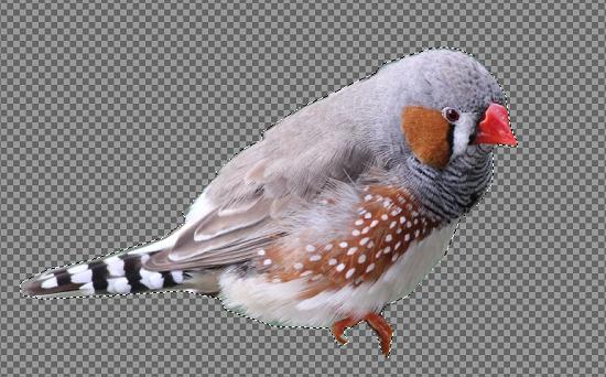 GIMPで画像の切り抜き、画像のいらない部分を切り捨てる方法