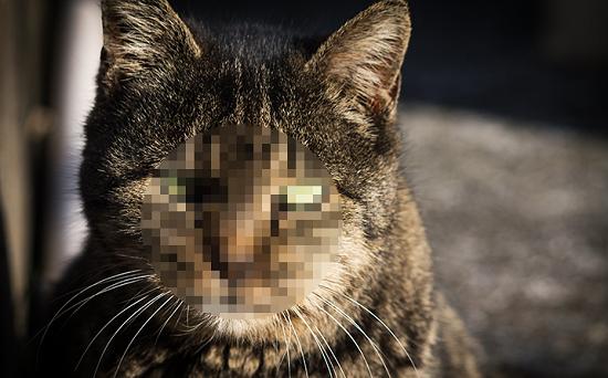 GIMPで画像にモザイクをかける方法(フィルター機能)