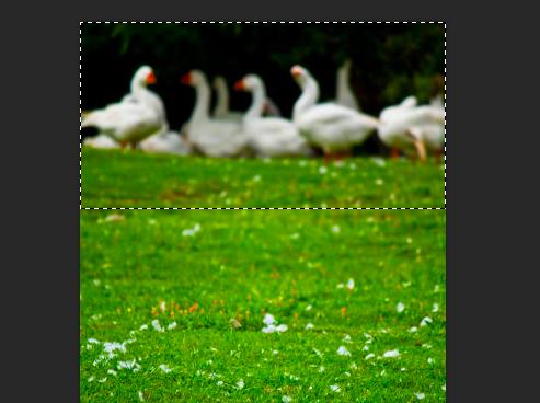Photoshopで写真のいらない部分を自然に取り除く方法「コンテンツに合わせる」
