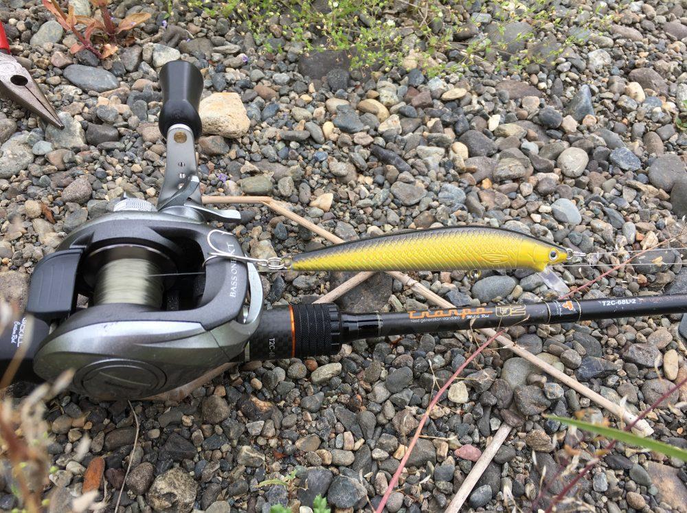 【荒川 ブラックバス釣り】メガバス ワンテン プラスでニゴイが釣れた!VISION ONETEN+1