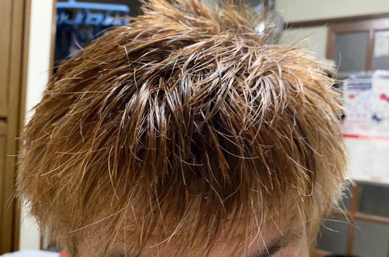 白髪混じりの髪にハイブリーチをするとどうなる?金髪にしてみた